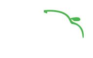 V-CLEANING Logo